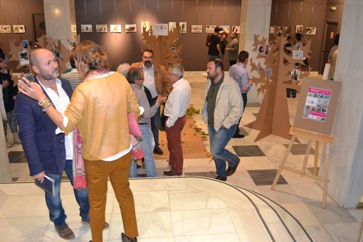La 'Naturaleza obstinada' de Juan Solo, en la sala de arte de la Delegación de la Junta