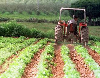 """Los 'populares' cuentan que """"Page no paga la PAC y pierde 15 millones de euros para el sector vitivinícola"""""""