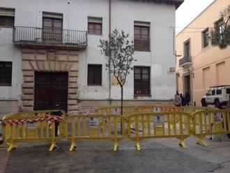 Plantada una encina en la Plaza de San Esteban