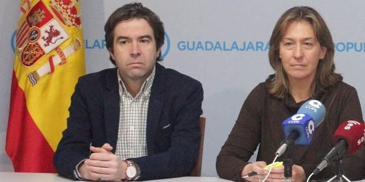 """El PP pide a Page que diga """"dónde va el dinero que les quita a los agricultores, a los apicultores y al mundo rural"""""""
