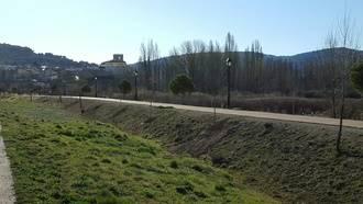 Pareja planta un centenar de árboles ornamentales en diferentes espacios públicos de la villa