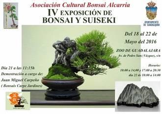 Guadalajara volverá a llenarse de bonsáis y suisekis