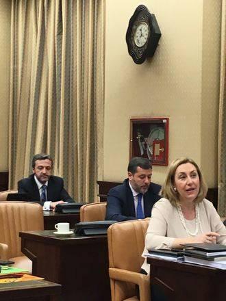 """Valmaña reafirma en el Congreso """"el compromiso del PP con las personas con discapacidad, con sus familias y con el movimiento asociativo"""""""