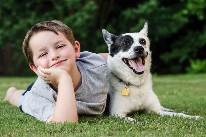 El Casino Principal acoge este sábado la jornada 'Nuestro perro, una herramienta en la educación de los hijos'