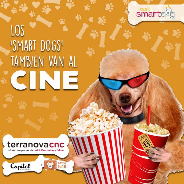 Una empresa de Guadalajara hace que se pueda ir al cine con perros en Madrid