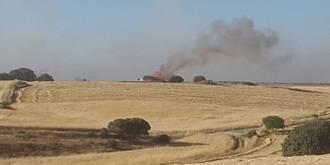 Extinguido un incendio forestal declarado en Valdeavellano