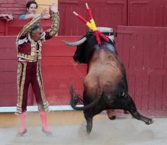 Fallece el torero mexicano El Pana