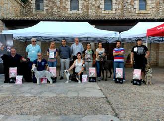 Fuentenovilla celebró su I Concurso Nacional Canino