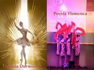 Danza de diferentes estilos los días 17 y 18 de junio en el TABV