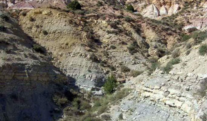 Fuentelsaz, acreditado como un punto geológico estratégico mundial para el Jurásico inferior y medio