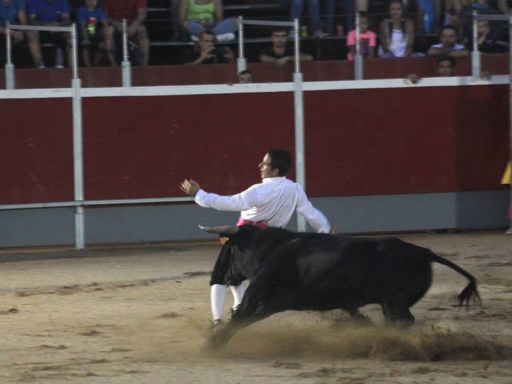 """Recortadores, """"disco-vaca"""" y un encierro conformarán el capítulo taurino de las fiestas de Cabanillas"""