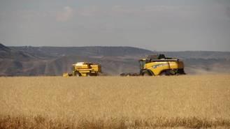 La buena cosecha del cereal en Guadalajara se ve ensombrecida por los precios