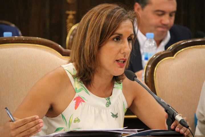 Diputación instará a la Junta a crear un plan presupuestado para garantizar la igualdad de oportunidades de acceso al mercado laboral a personas con diversidad funcional