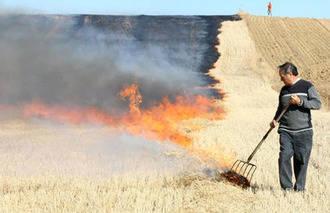 UPA consigue un compromiso para la quema controlada de rastrojos en Guadalajara