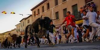 Dos heridos por asta de toro y numerosas personas atendidas en el tradicional encierro de Brihuega