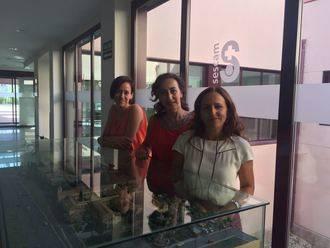 Profesionales del Área Integrada de Guadalajara expondrán las dificultades y posibilidades de mejora en materia de Cuidados Paliativos