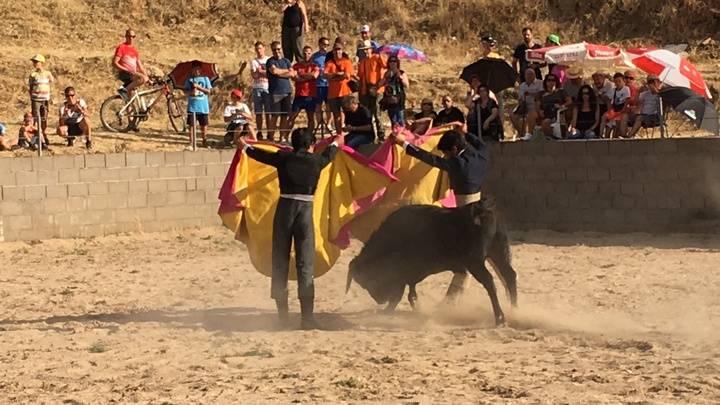 Los toros volvieron a las fiestas de Tamajón