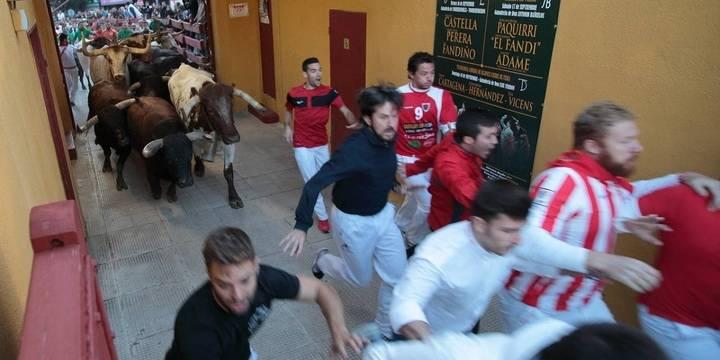 El primer encierro de las Ferias y Fiestas de Guadalajara, limpio y sin incidencias