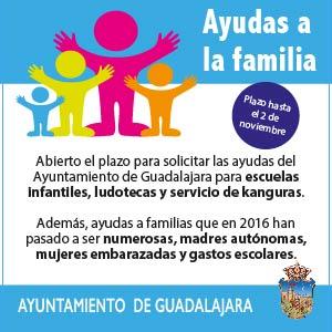 Ayudas a las Familias